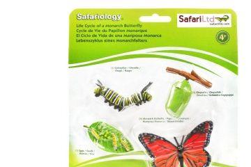 naravoslovje SAFARI LTD Figurice, razvojni krog metulja, Safari Ltd 622616