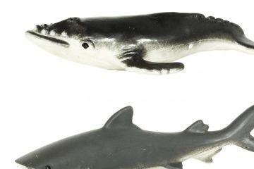 naravoslovje SAFARI LTD Figurice, ocean, Safari Ltd., 695104