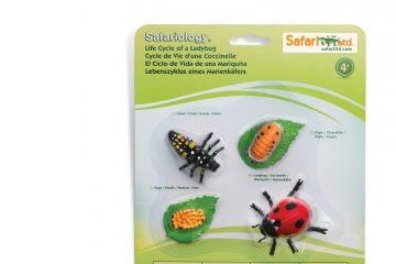 naravoslovje SAFARI LTD Figurice, življenski cikel pikapolonice, Safari Ltd.