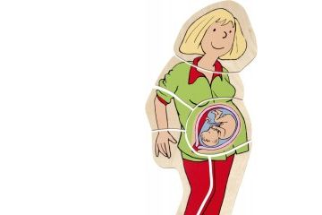 naravoslovje - sestavljanke BELEDUC Sestavljanka prikaz nosečnosti, Beleduc 17024