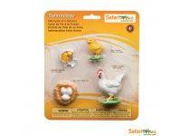 naravoslovje SAFARI LTD Figurice, razvojni krog kokoši, Safari Ltd 662816