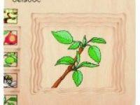 večplastne sestavljanke BELEDUC Sestavljanka jabolko, Beleduc 17039